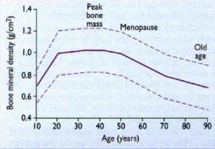 dieta e stile di vita per losteoporosis
